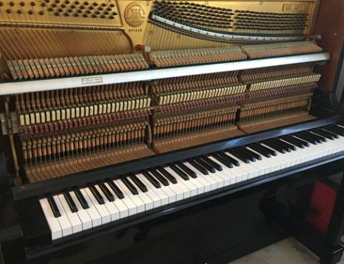 The Guts of the Piano!